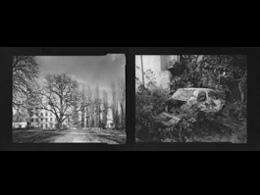 Na styku szarości - wystawa Miłosza Krajewskiego